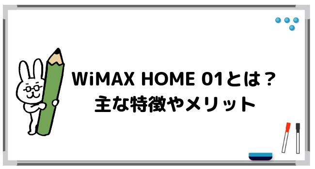 そもそもWiMAX HOME 01とは